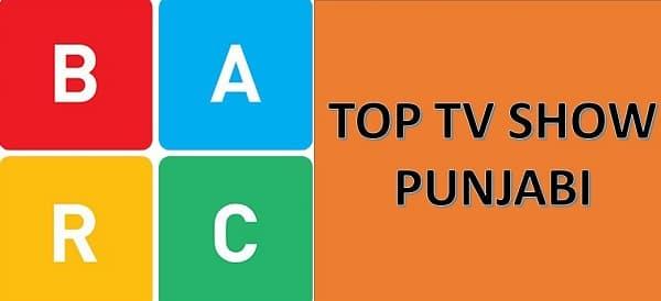 Punjabi TV Show BARC Ratings- Top 5 Punjabi TV Shows