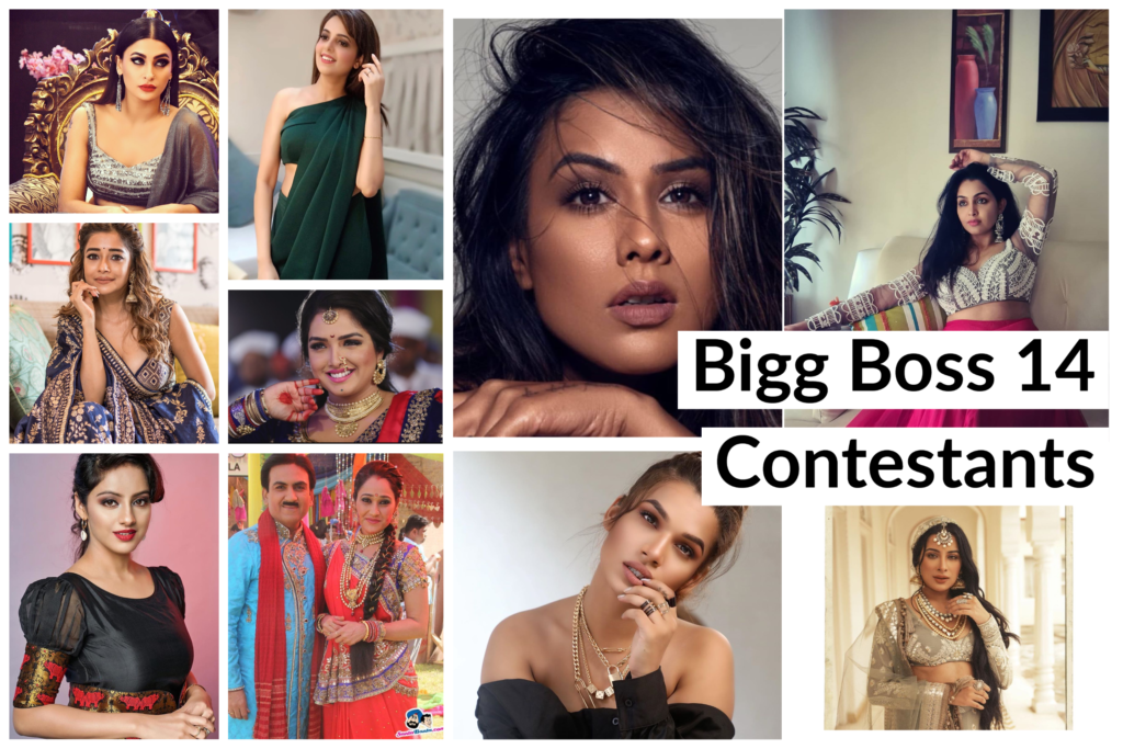 Bigg Boss 14: Contestants Name List with Photos